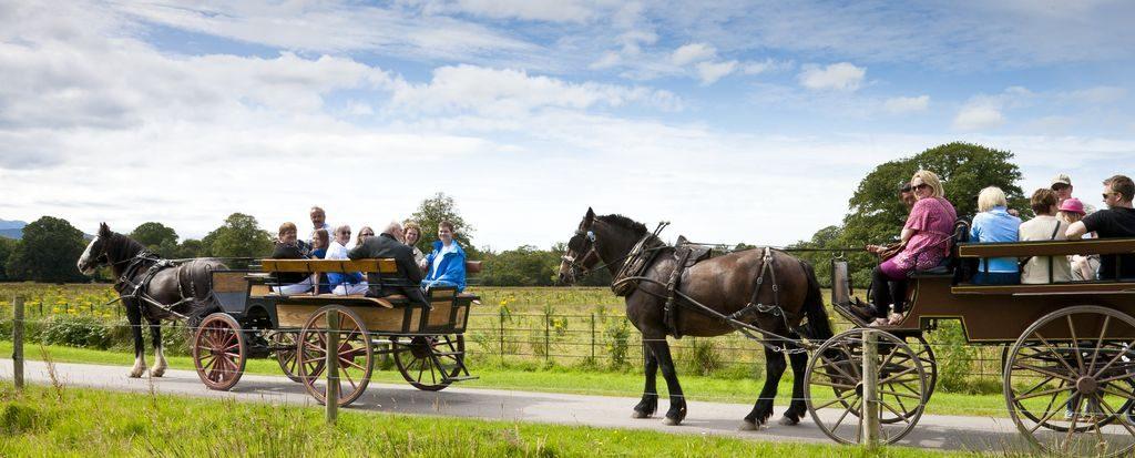 Medium Jaunting Cars Killarney County Kerry 1